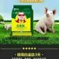 养猪方法喂什么长的快 猪吃什么长得快  谊鑫白金肽